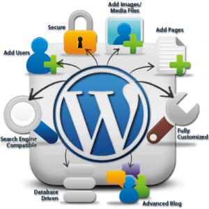 Vì sao nên sử dụng CMS wordpress?