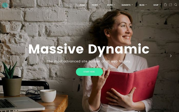 Massive Dynamic - theme wordpress hình ảnh trực quan