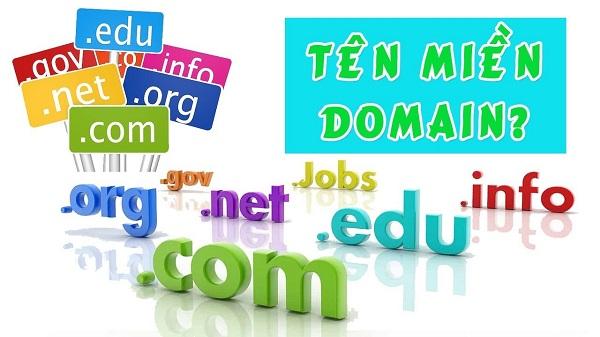 trỏ domain về host
